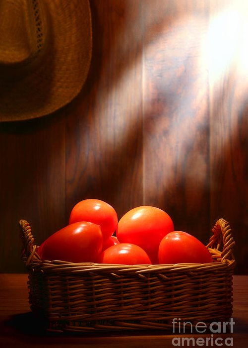 Tomatoes Greeting Card featuring the photograph Tomatoes At An Old Farm Stand by Olivier Le Queinec