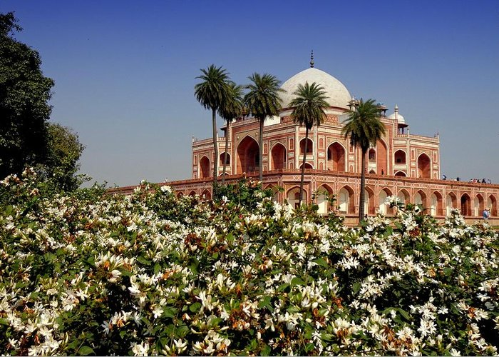 Tranquility Greeting Card featuring the photograph Tomb Of Humayun by Smit Sandhir