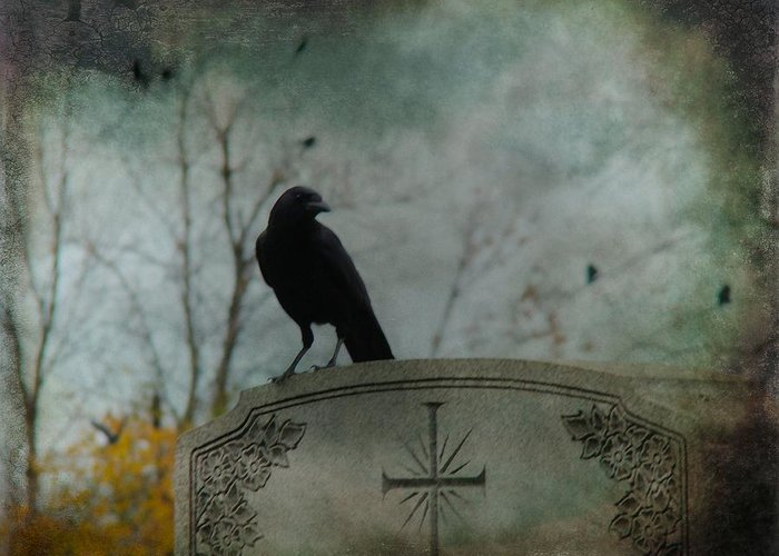 Crows On Tombstones Greeting Cards
