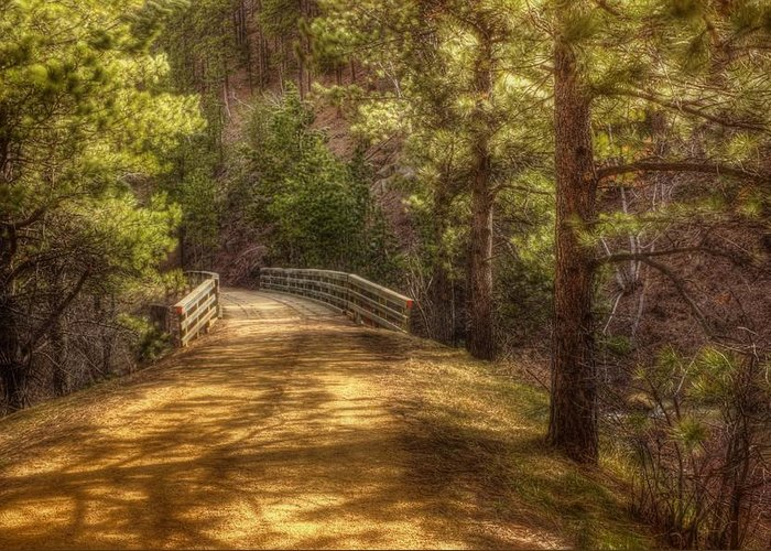 Landscape Greeting Card featuring the photograph Top Of The Bridge by Michele Richter