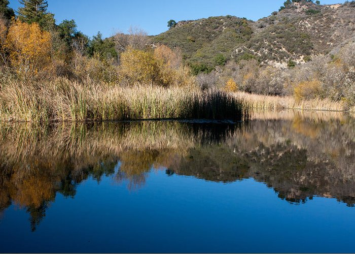 America Greeting Card featuring the photograph Topanga Canyon Series by Josh Whalen