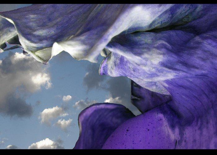 Petals Greeting Card featuring the digital art Torn Curtain by Alfredo Machado