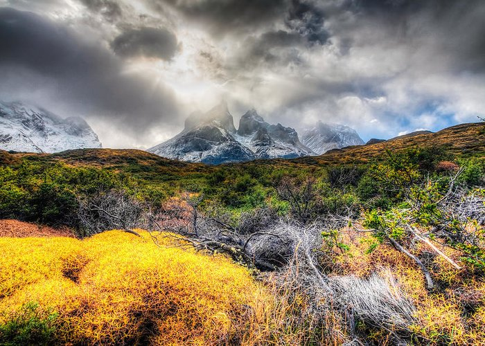 Chile Greeting Card featuring the photograph Torres Del Paine Peaks by Roman St