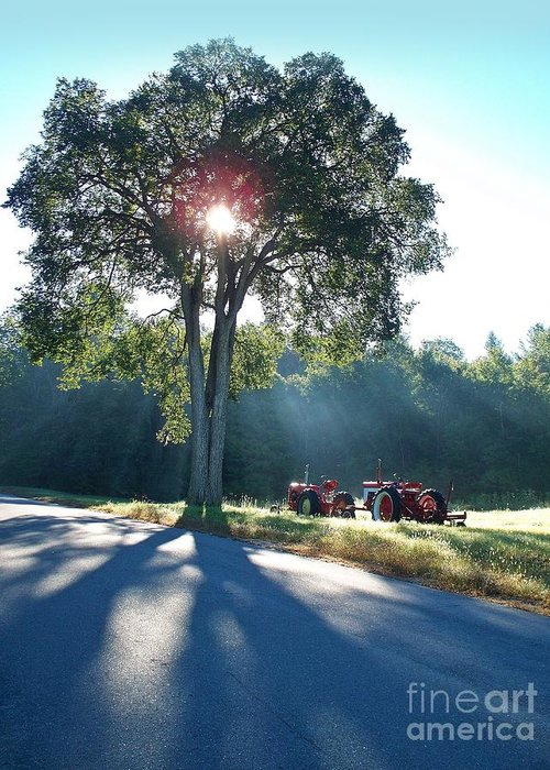Trees Greeting Card featuring the photograph Tractors by Joy Nichols