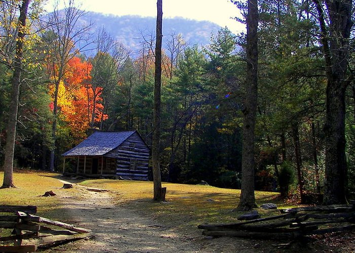 Cabins Greeting Card featuring the photograph Traveling Back In Time by Karen Wiles