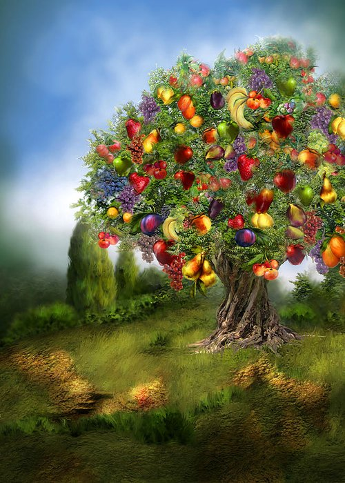 Fruit Tree Art Giclee Greeting Cards