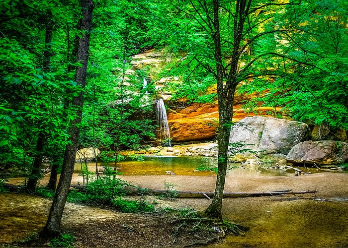 Hocking Hills Greeting Card featuring the photograph Tree Roots by Optical Playground By MP Ray