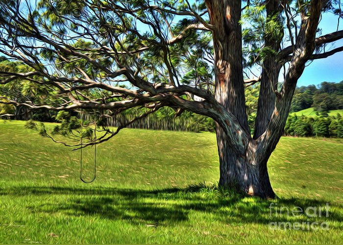 Photography Greeting Card featuring the photograph Tree With A Swing by Kaye Menner