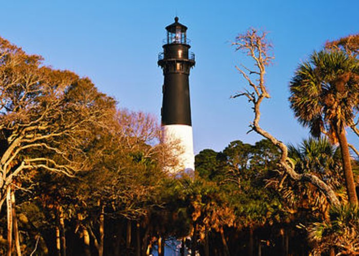Hunting Island Lighthouse Greeting Cards