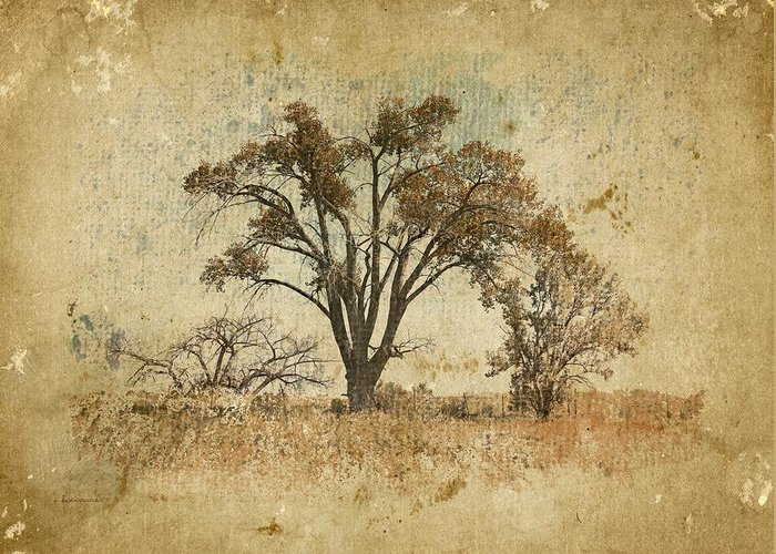 Epic Amazing Colors Landscape Digital Modern Still Life Trees Warm Natural Greeting Cards