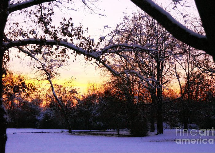Snow Greeting Card featuring the photograph Trees In Wintry Pennsylvania Twilight by Anna Lisa Yoder
