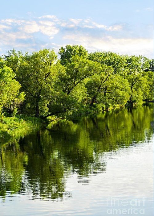 Trees Greeting Card featuring the photograph Trees Reflecting In River by Elena Elisseeva