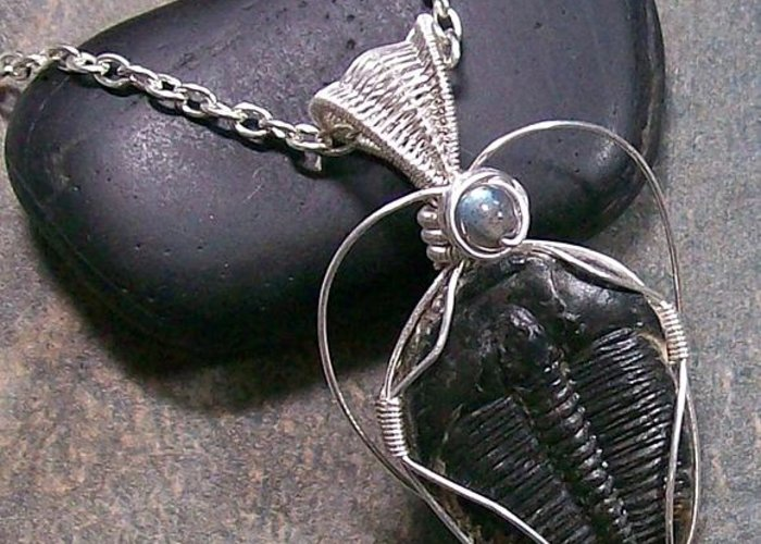Wire Greeting Card featuring the photograph Trilobite Fossil And Labradorite Pendant Tril22 by Heather Jordan