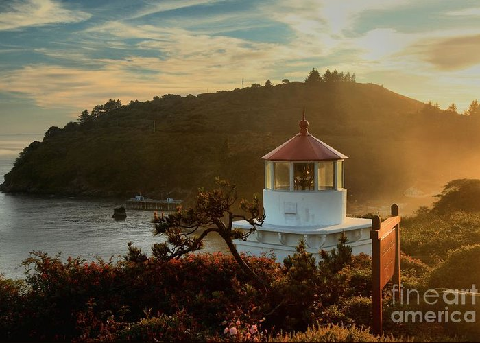 Trinidad Beach Greeting Card featuring the photograph Trinidad Fog Light by Adam Jewell