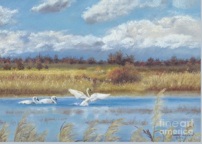 Trumpeter Swans Greeting Card featuring the painting Trio Of Trumpeter Swans by Jymme Golden