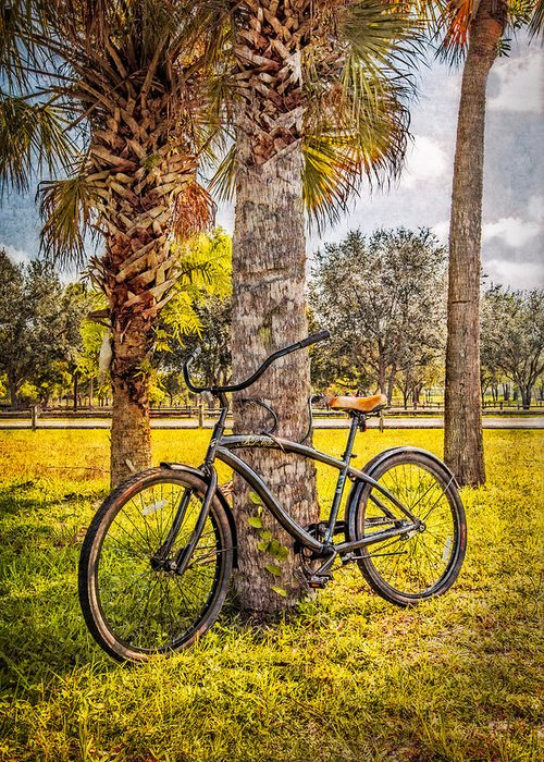 Clouds Greeting Card featuring the photograph Tropical Bicycle by Debra and Dave Vanderlaan