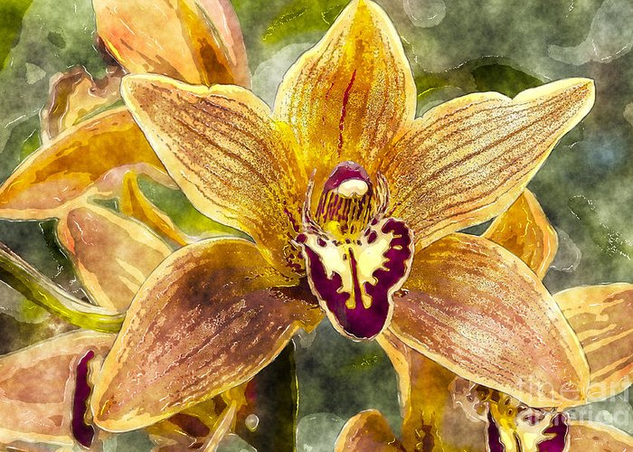 Orchid Greeting Card featuring the photograph Tropical Orchid by Carrie Cranwill