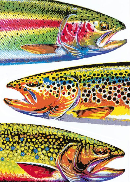 Jon Q Wright Greeting Card featuring the painting Trout Abstraction by JQ Licensing