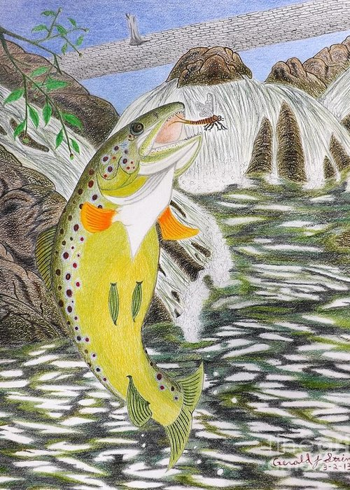 Trout Stream Greeting Card featuring the drawing Trout Stream In May by Gerald Strine