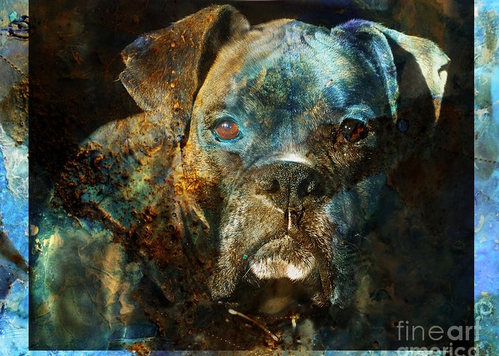 Dog Greeting Card featuring the digital art True Colours by Judy Wood