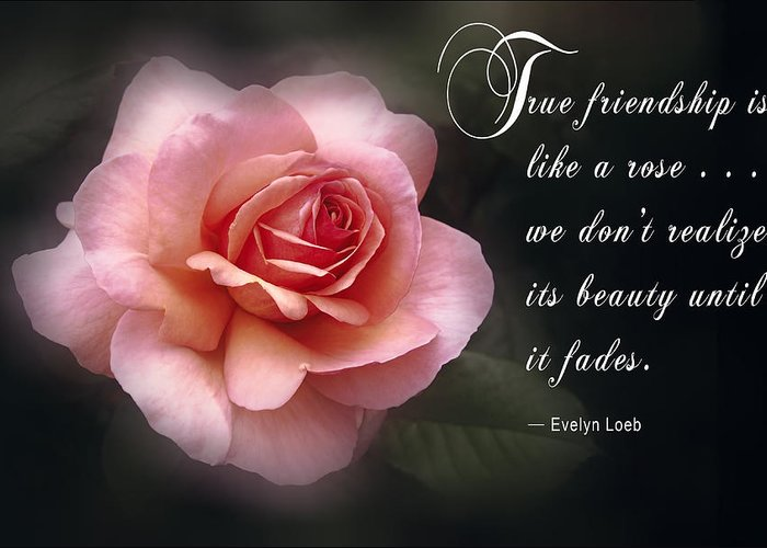 True Friendship Greeting Cards