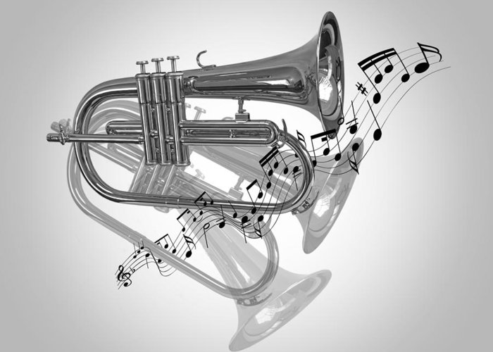 Trumpet Fanfare Black And White Greeting Card