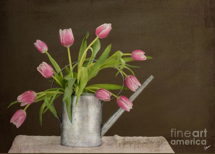 Tulips Greeting Card featuring the photograph Tulip Bouquet by Alana Ranney