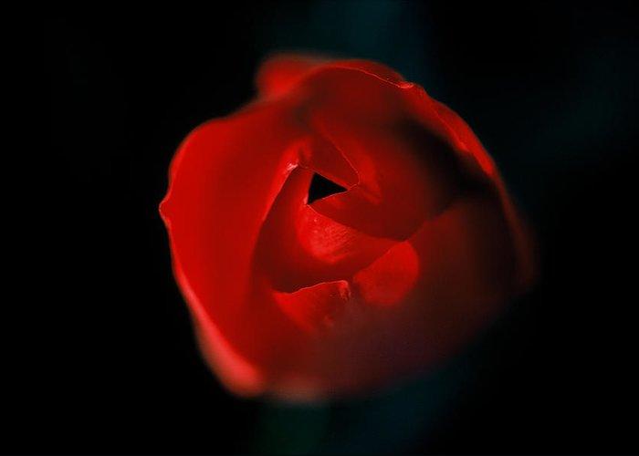 Floral Greeting Card featuring the photograph Tulip Pucker by Matt Swinden