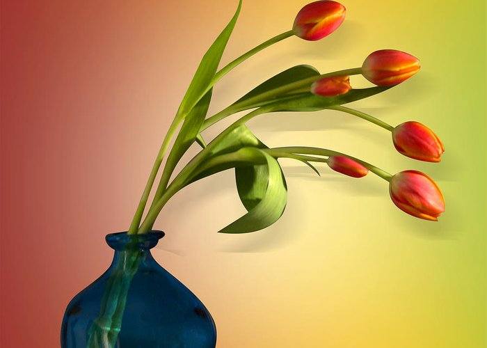 Designs Similar to Tulips 5 by Mark Ashkenazi
