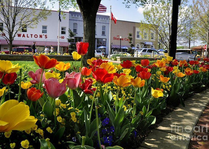 Bentonville Greeting Card featuring the photograph Tulips In The Spring by Nava Thompson