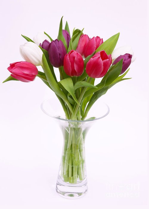 Tulip Greeting Card featuring the photograph Tulips In Vase by Rosemary Calvert