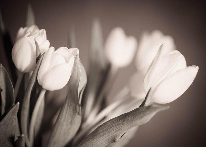 Blackandwhite Greeting Card featuring the photograph Tulips by Zina Zinchik