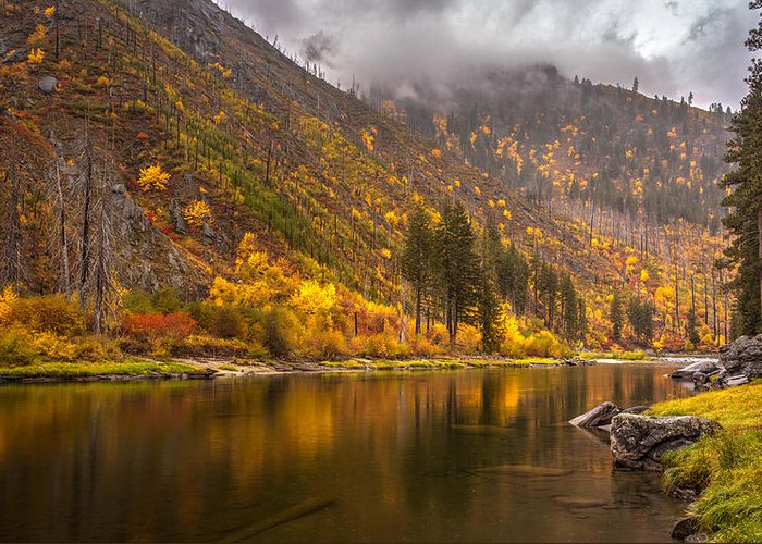 Fall Colors Greeting Card featuring the photograph Tumwater Canyon Fall Serenity by Mike Reid