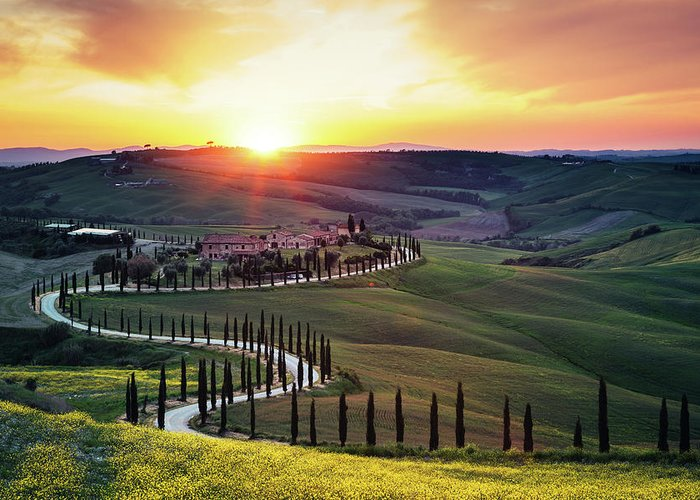 Scenics Greeting Card featuring the photograph Tuscany Landscape At Sunset by Borchee