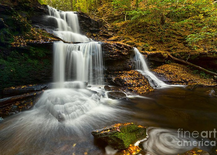 Ricketts Glen Greeting Card featuring the photograph Tuscarora Falls In Fall by Eric Gaston