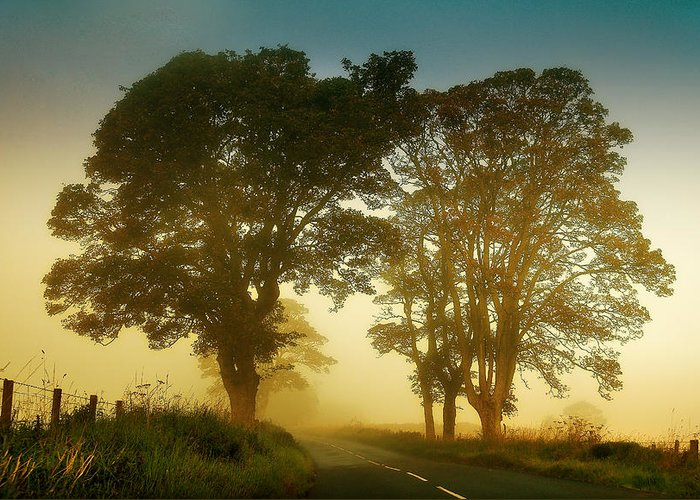 Scotland Greeting Card featuring the photograph Twilight Guardians. Misty Roads Of Scotland by Jenny Rainbow