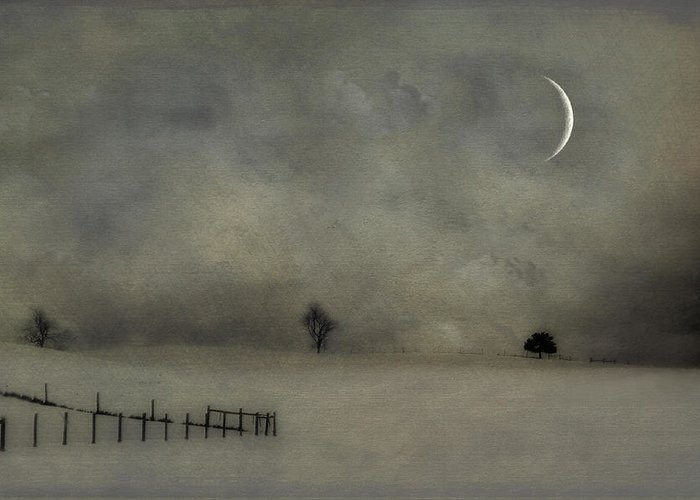 Snow Greeting Card featuring the photograph Twilight by Kathy Jennings