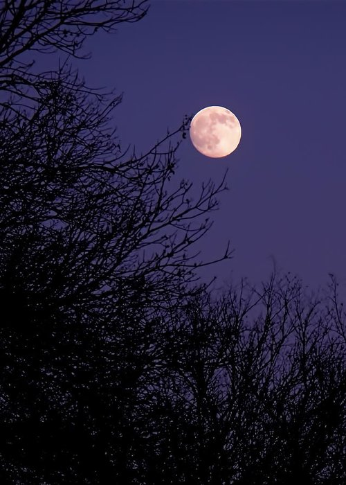 Full Moon Greeting Card featuring the photograph Twilight Moon by Rona Black