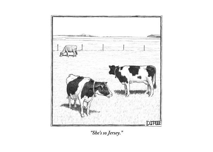 Cows Greeting Card featuring the drawing Two Spotted Cows Looking At A Jersey Cow by Matthew Diffee