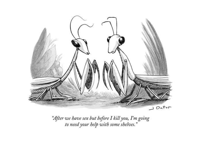 After We Have Sex But Before I Kill You Greeting Card featuring the drawing Two Praying Mantises Facing Each Other by Joe Dator
