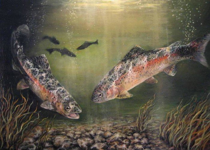 Nature Greeting Card featuring the painting Two Rainbow Trout by Donna Tucker