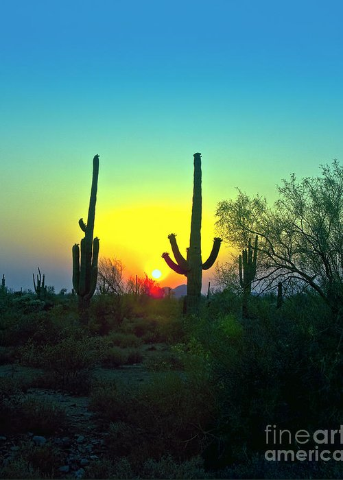 Arizona. Desert Plants Saguaro Greeting Card featuring the photograph Two Saguaro by Brian Lambert