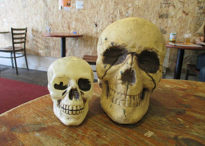 Two Greeting Card featuring the photograph Two Skulls - At The Cafe by David Lovins