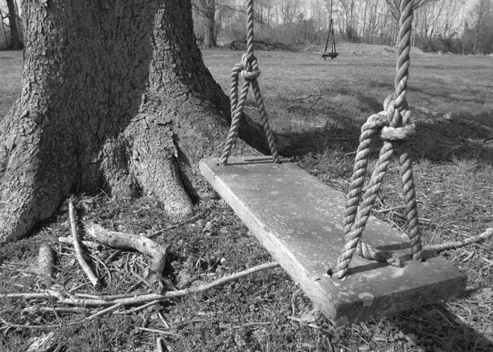 Two Swings Greeting Card featuring the photograph Two Swings B/w by Beth Vincent