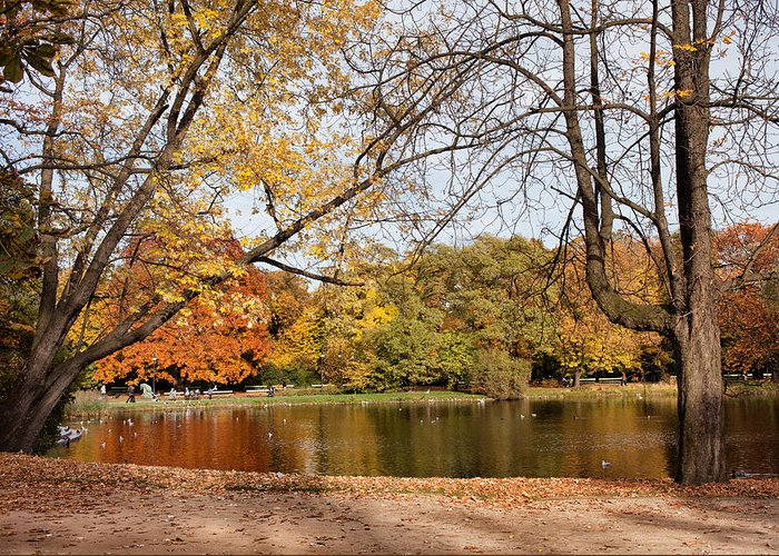Pond Greeting Card featuring the photograph Ujazdowski Park In Warsaw by Artur Bogacki