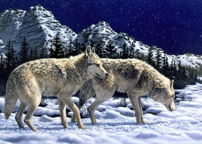 Wolf Greeting Card featuring the painting Wolves - Unfamiliar Territory by Crista Forest