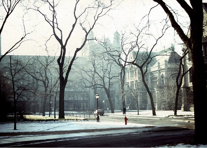 University Of Chicago Greeting Card featuring the photograph University Of Chicago 1976 by Joseph Duba