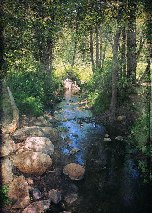 Idyllwild Greeting Card featuring the photograph Until I Loved You by Laurie Search