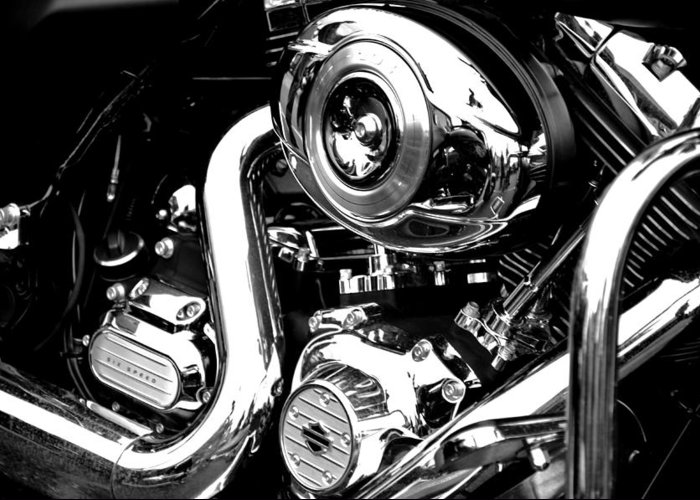Black And White Greeting Card featuring the photograph Up Close With Harley by Martina Fagan