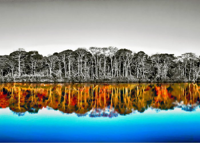 Foliage Greeting Card featuring the photograph Upside Down World by J Charles